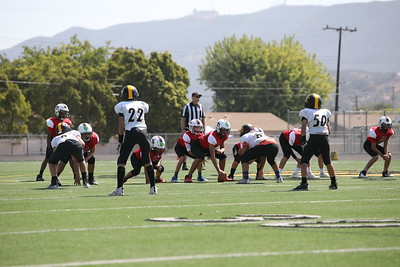 Saints Vs Steelers_020