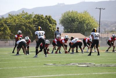Saints Vs Steelers_022
