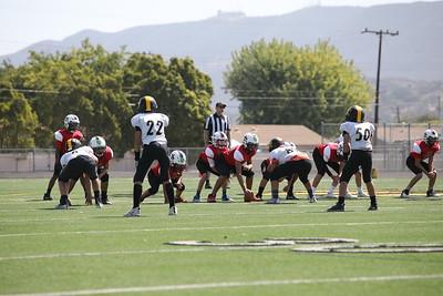 Saints Vs Steelers_021