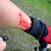 BLOODY BRAMBLES