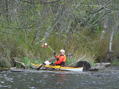 2018 April Lake Kapowsin kayak clean up