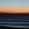 Seaside 5k 2013 2013-10-20 001