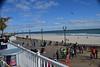 Seaside Half 2014 2014-10-18 519