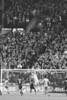 2012-11-02 Sounders vs RSL-19