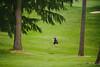 2014_05_20 Tri Districts Golf-115