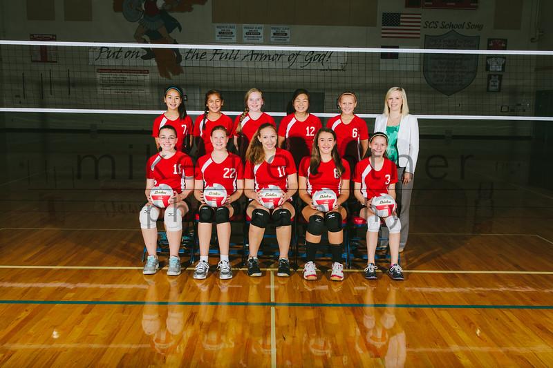 MS-Girls-Volleyball-01