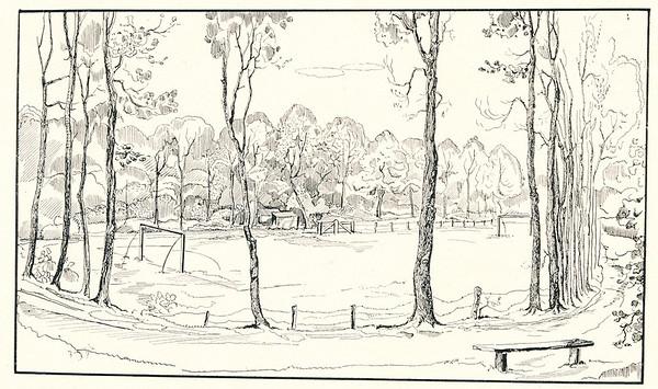 Veld Park Braband DHV 1914-1921  Opmerking: ook in Clubnieuws November 1953 Lustrumnummer p. 10.   Clubnieuws 6 (1938-1939), 2, p. 17