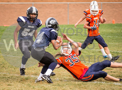 MC Blue v. Mt. Ogden (Sep 7, 2013)