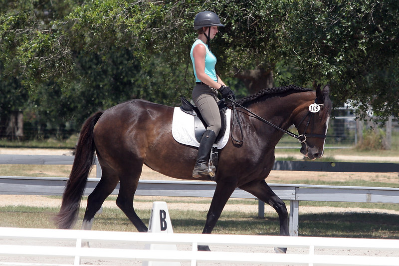 Serenity Farms Dressage Folsom La 06 04 2006 A 025 ps
