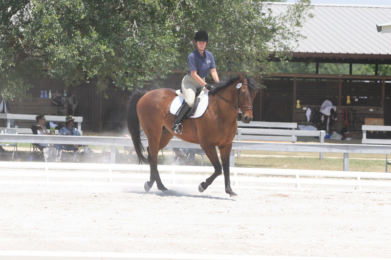 Serenity Farms Dressage Folsom La 06 04 2006 A 001