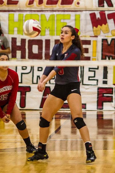 2016 11 01  Pioneer v Donna Playoff Volleyball_dy-31.jpg