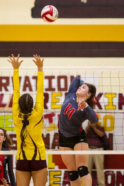 2016 11 01  Pioneer v Donna Playoff Volleyball_dy-39.jpg