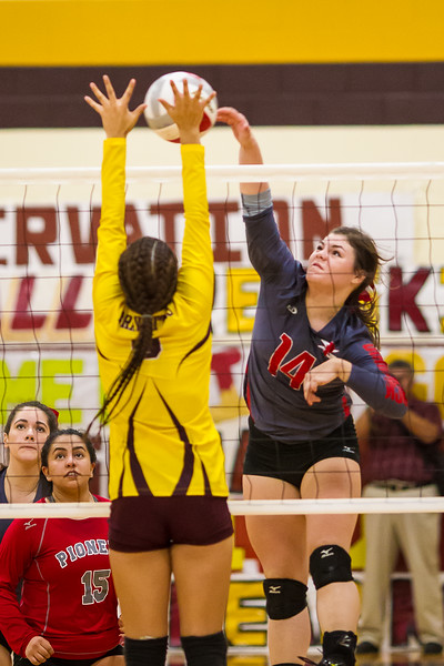 2016 11 01  Pioneer v Donna Playoff Volleyball_dy-40.jpg