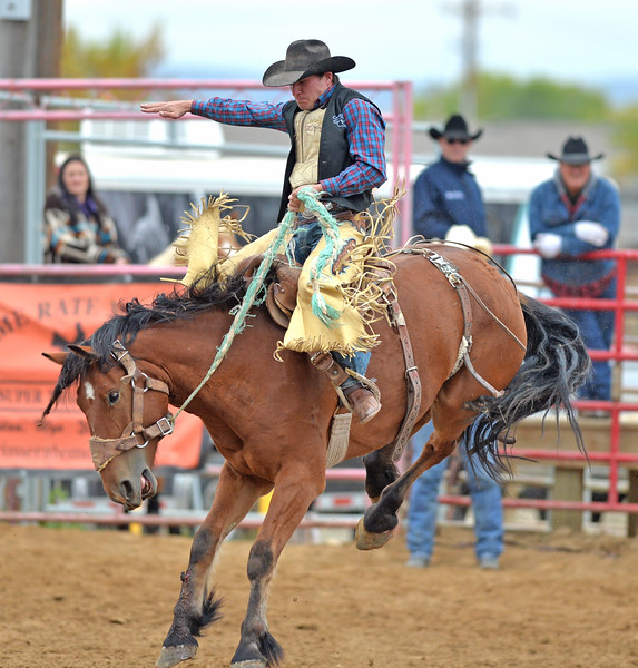 Bud Denega | The Sheridan Press<br /> Sheridan College's Lane Schuelke competes in saddle bronc during the Pat Hamilton Memorial Rodeo at the Sheridan County Fairgrounds Sunday, Sept. 23, 2018. Schuelke 72-point short-round ride earned him the top spot.
