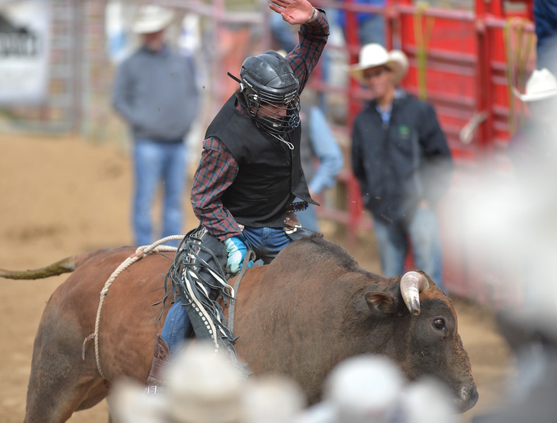 Bud Denega | The Sheridan Press<br /> Sheridan College's Coby Johnson competes in bull riding during the Pat Hamilton Memorial Rodeo at the Sheridan County Fairgrounds Sunday, Sept. 23, 2018.