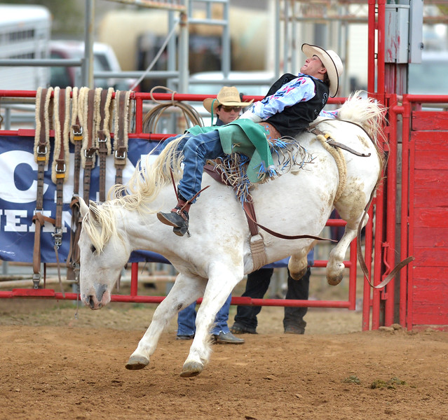 Bud Denega | The Sheridan Press<br /> Sheridan College's Chance Ames competes in bareback during the Pat Hamilton Memorial Rodeo at the Sheridan County Fairgrounds Sunday, Sept. 23, 2018. Reiner's 84-point short-round ride earned him the top spot.