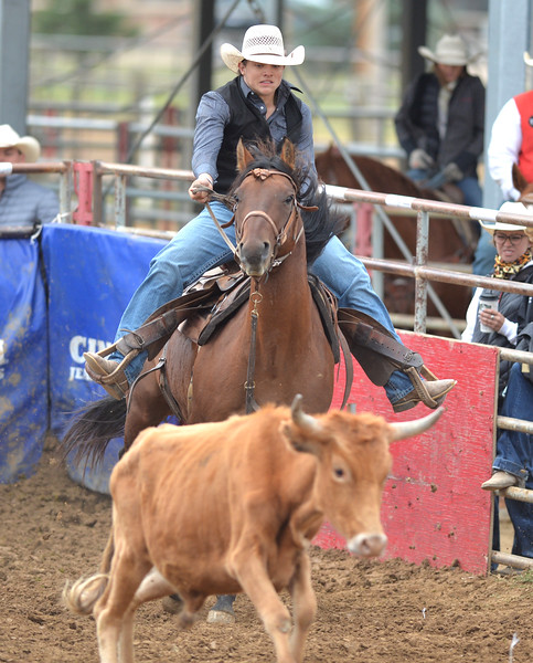 Bud Denega | The Sheridan Press<br /> Sheridan College performed well in the rough-stock events over the weekend at its home rodeo.