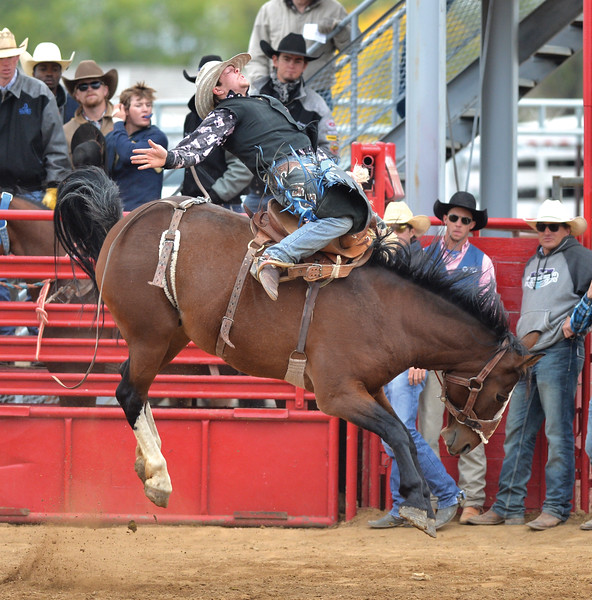 Bud Denega | The Sheridan Press<br /> Sheridan College won its home rodeo this weekend with 580 points.