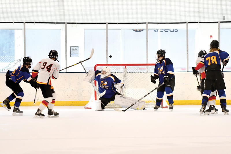 Matthew Gaston | The Sheridan Press<br>The Hawks' goalie Josh Eaton, deflects a shot by Casper's Beau Donelan (94), with his blocker Saturday, Jan. 12, 2019.