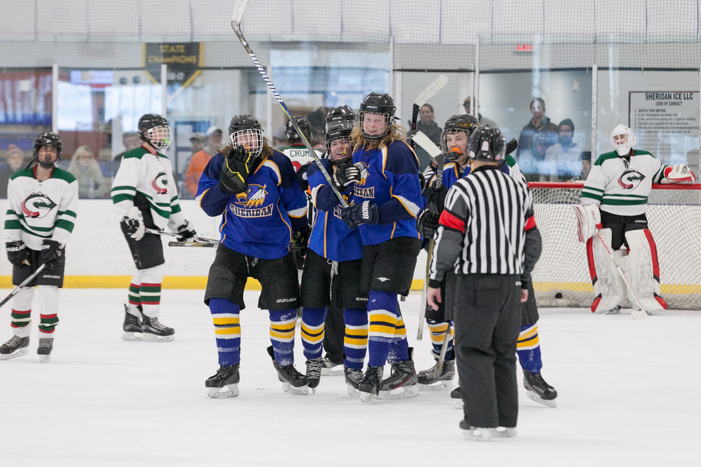 Tibby McDowell   The Sheridan Press<br /> The Sheridan Hawks celebrate a goal by Walker Billings, the third goal in the game, against Pinedale during the semi-finals of the state tournament at Whitney Rink at the M&M's Center Saturday Feb. 24, 2018.