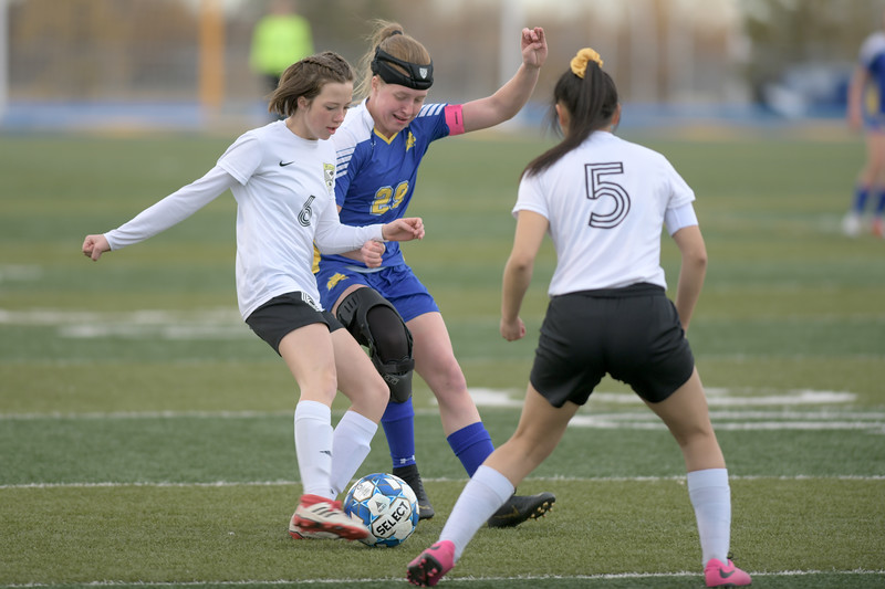 Matthew Gaston | The Sheridan Press<br>Sheridan's Mikayla Johnson (29) blocks a pass during play against Cheyenne South Friday, March 22, 2019. The Lady Broncs beat the Lady Bison 3-0.