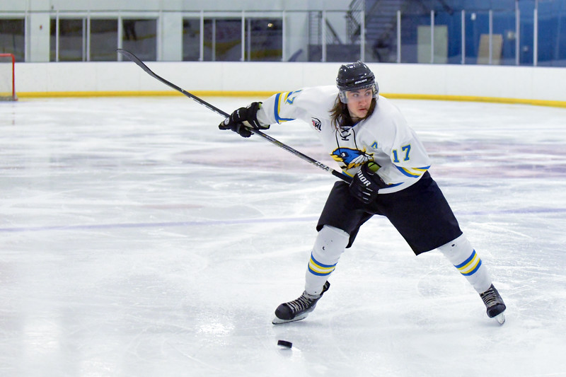 Joel Moline | The Sheridan Press<br /> Sheridan NA3HL Hawks player Alex Kesler (17) winds up for a slap shot against the Missoula Junior Bruins Saturday, Nov. 9.