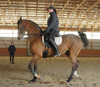 Show Horses-Crescendo