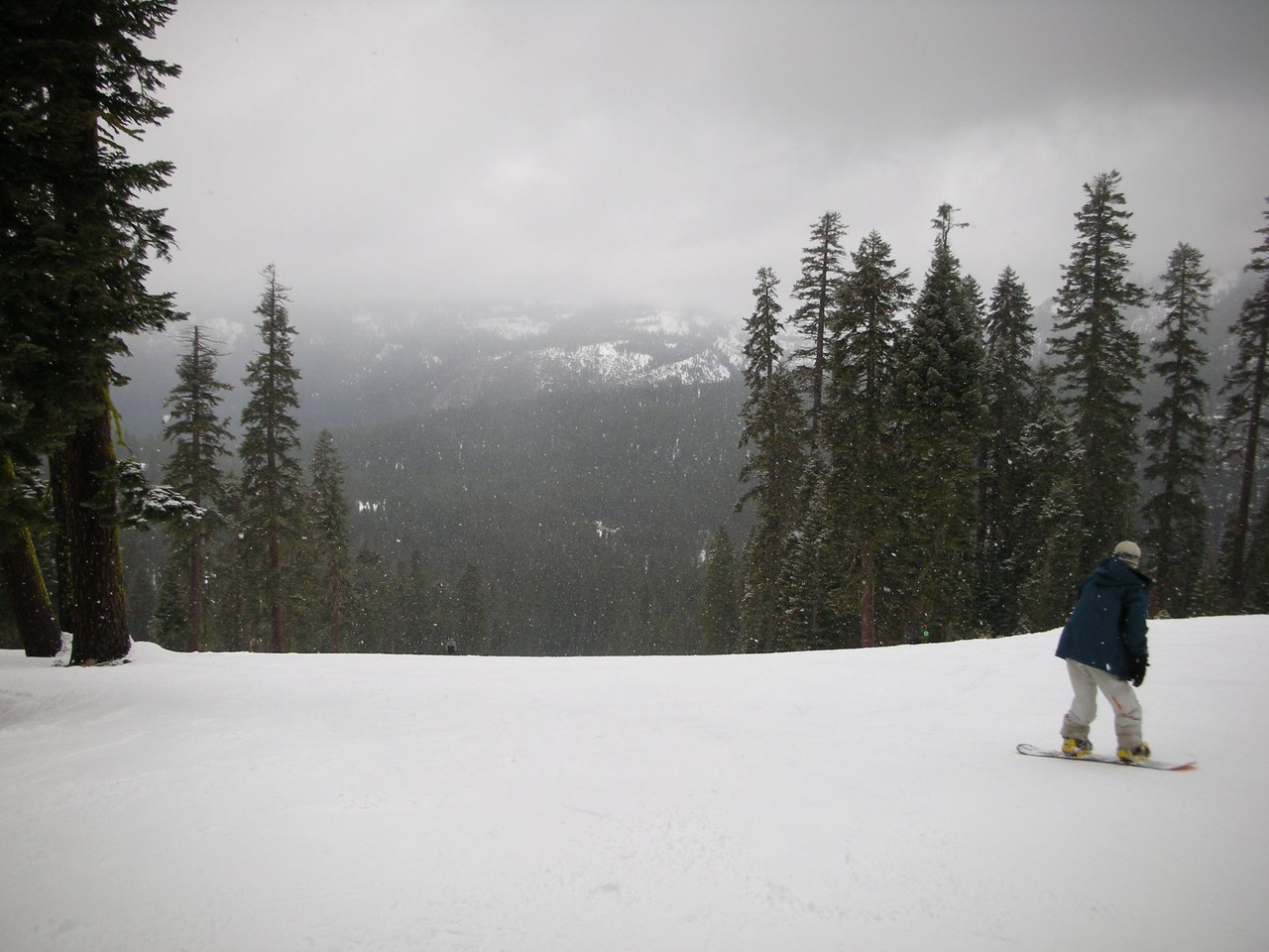 Oh yeah!  I'm on the hill!  It's snowing!  I got new skis on!  Let's rock!