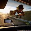 Les 24 Heures Du Mans Rollers 2016