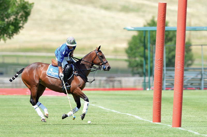 Joel Moline | The Sheridan Press<br /> Lucio Benedict scores an easy goal at the Flying H Polo Club Thursday, Aug. 1, 2019.