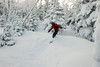 20080126_dtepper_bluebird_powder_dip_runs_DSC_0153
