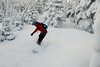 20080126_dtepper_bluebird_powder_dip_runs_DSC_0156