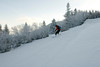 20080126_dtepper_bluebird_powder_dip_runs_DSC_0160