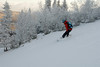 20080126_dtepper_bluebird_powder_dip_runs_DSC_0165