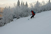 20080126_dtepper_bluebird_powder_dip_runs_DSC_0164