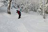 20080126_dtepper_bluebird_powder_dip_runs_DSC_0174