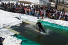 20080419_dtepper_pond_skimming_01_DSC_0104