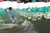 20080419_dtepper_pond_skimming_01_DSC_0296