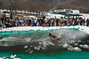 20080419_dtepper_pond_skimming_01_DSC_0054