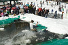 20080419_dtepper_pond_skimming_01_DSC_0307