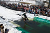 20080419_dtepper_pond_skimming_01_DSC_0103