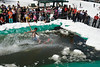 20080419_dtepper_pond_skimming_01_DSC_0090