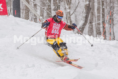 2017 Bear Mountain Mogul Challenge