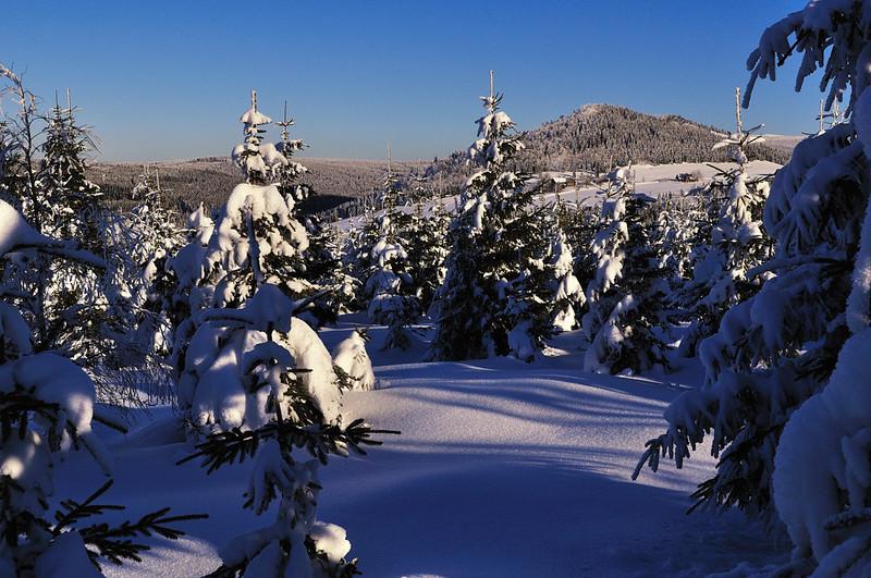 Pohled na horu Bukovec (1006 m n.m.) z Promenádní cesty