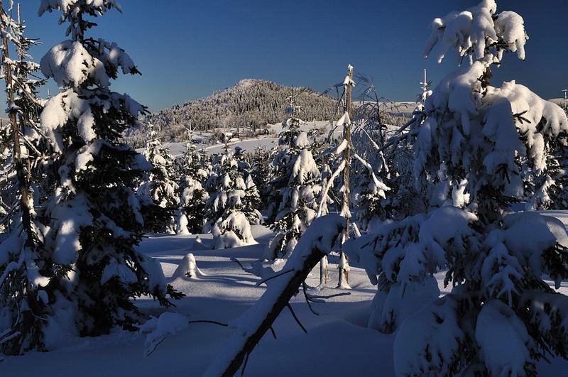 Pohled na horu Bukovec (1006 m n.m.) od Promenádní cesty (použit polarizační filtr)