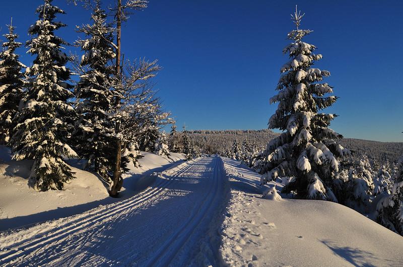nad přehradou Souš - cesta vede zpět do Kořenova