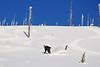 NX2_2010-01-27_130_Highland PowderDSC_6657