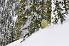 NX2_2010-01-29_564_Highland PowderDSC_6810