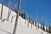 NX2_2010-01-27_107_Highland PowderDSC_6634