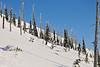 NX2_2010-01-27_109_Highland PowderDSC_6636